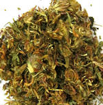 Red Clover Dried Herb