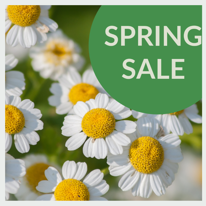 PHYTOMED website - spring sale 2019 (2)-388
