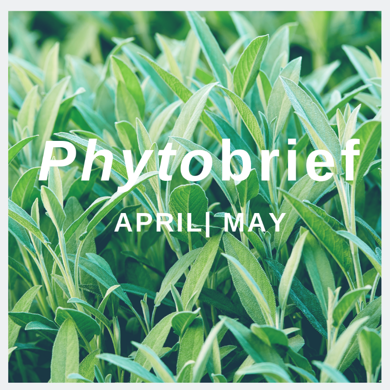 Phytomed Website - phytobrief April May 2019-589